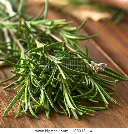 Fresh rosemary (lat. Rosmarinus officinalis) branches on dark wood photographed with natural light (Selective Focus Focus one third into the leaves and on the flower buds)
