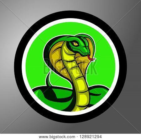 Cobra sticker banner .eps10 editable vector illustration design