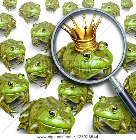 Searching for leadership or search and business recruitment concept as a group of frogs and one individual standing out with a king crown as a metaphor for the right chosen one with 3D illustration elements.