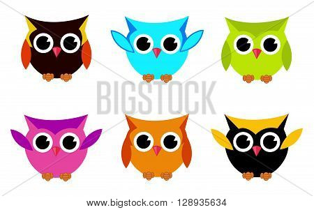 Cute Vector Collection of Bright Owls on white