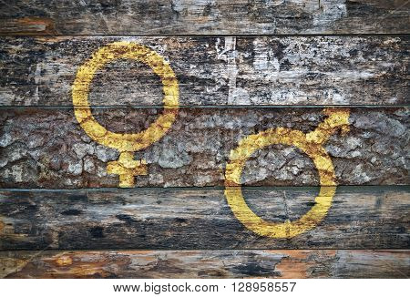 Two human gender symbols written on peeled wooden background