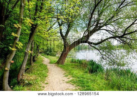From the shore of Lake exquisite photographs NATURAL during the spring period, suitable as background