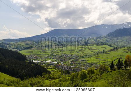 Mountain valley with forest and meadows Carpathian mountains Ukraine