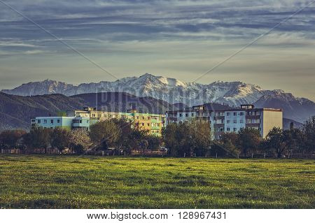 Spring landscape with snowy Bucegi mountains old block of flats and blooming dandelion fields in the outskirts of Brasov city Romania.