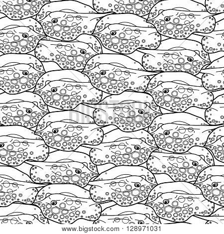 Graphic cramp fish collection drawn in line art style. Vector seamless pattern. Sea and ocean creatures in black and white colors. Coloring book page design