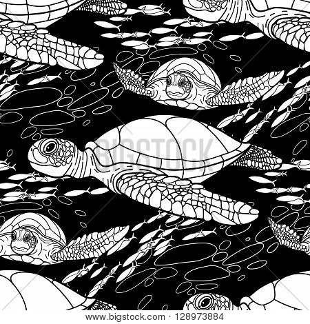 Graphic Hawksbill sea turtle drawn in line art style. Ocean vector seamless pattern. Coloring book page design