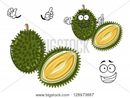 Chinese king of fruits durian cartoon character. Oriental fruit with overpower odour and funny spikes design for organic farming or vegetarian nutrition theme