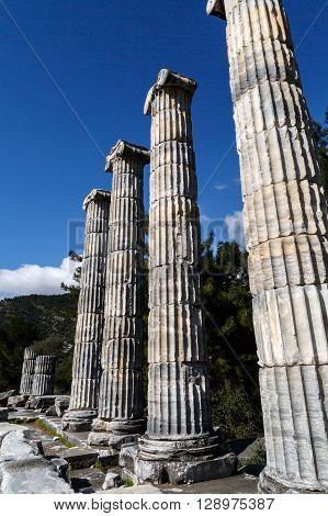 Priene Ruins View