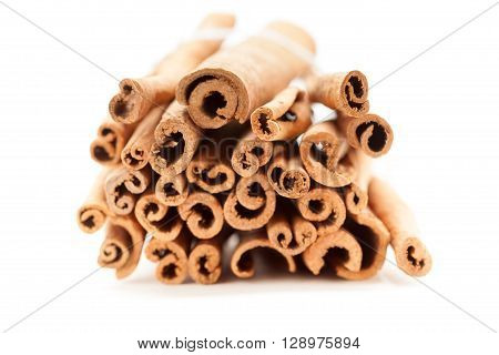 Top front view of Raw Organic Cinnamon sticks (Cinnamomum verum) bundle tied up with thread.