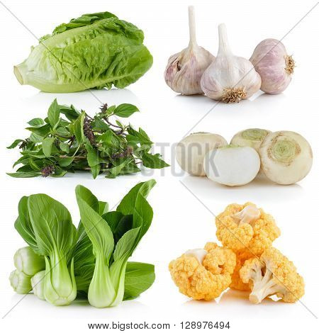 Bok choy cauliflower Sweet Basil white turnips garlic baby cos on white background