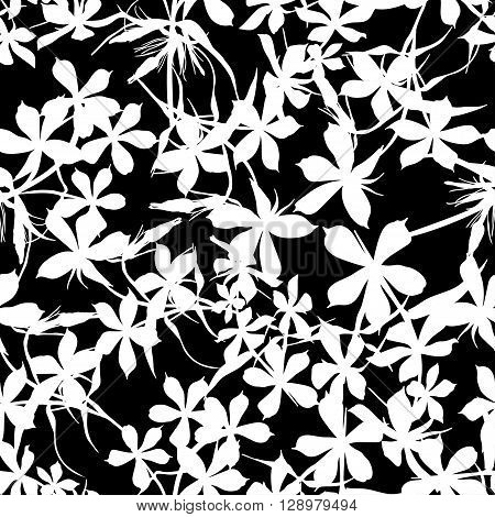 Seamless background with flowers of beautiful hand-drawn silhouette phlox in black and white colors. Vector illustration