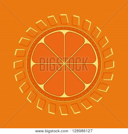 Citrus Fruits. Fruit vitamin enegry Concept. Sliced orange. Orange Enegry Concept. Organic fruit natural. Tropical citrus. Natural fruit with vitamin for juice dessert. Vector Illustration