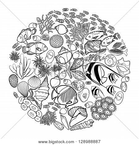 Ocean flora and fauna in the circle shape . Fish, seashells, seaweed and corals drawn in line art style on white background. Coloring book page design