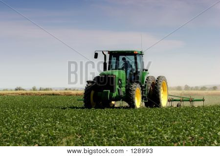 Farmer Plowing The Field