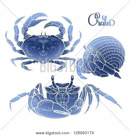 Graphic vector crab collection drawn in line art style. Sea and ocean creature in blue colors. Top view. Seafood element. Coloring book page design