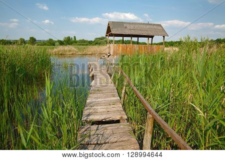 Swampland walkway with hut