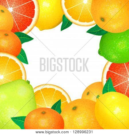 Frame of fresh citrus. Natural bio fruits healthy organic food. Realistic vector illustration