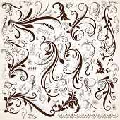 picture of adornments  - Floral design elements - JPG