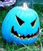 picture of jack-o-laterns-jack-o-latern  - a blue jack - JPG