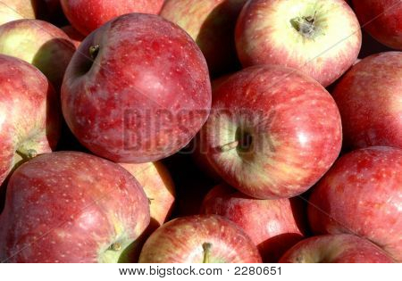 No Name Apples