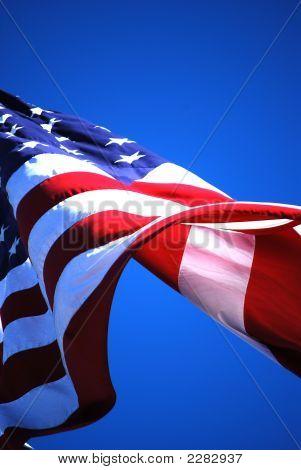 Flag Viii (Freedom)