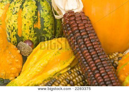 Corn Squash Pumpkin Background