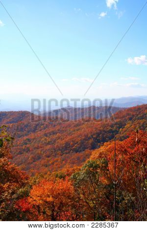 Vivid Fall In Mountains