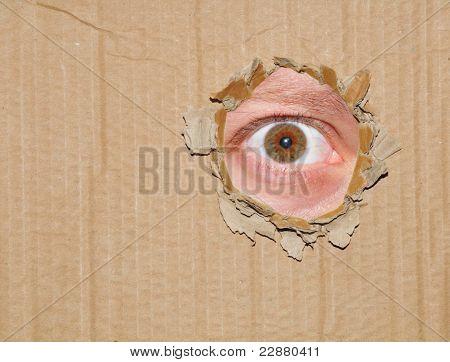 Eye spying