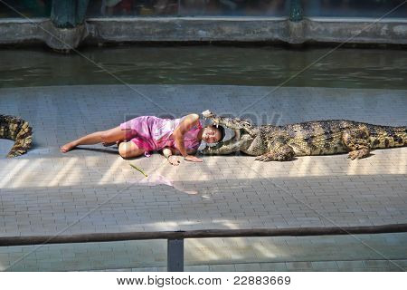 Crocodile Show In Thailand