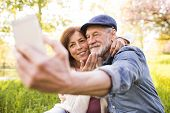 Beautiful Senior Couple In Love On A Walk Outside In Spring Nature Under Blossoming Trees. Man And W poster