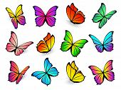 Butterflies Isolated On White Background. Vector Flying Colorful Butterfly Set With Bright Spring Co poster