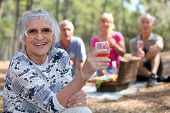 image of senior-citizen  - Group of friends having a picnic together in the forest - JPG
