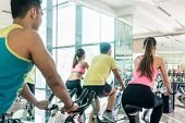 Rear low-angle view of two fit women with an active lifestyle burning calories during indoor cycling poster