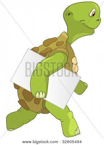 Funny Turtle