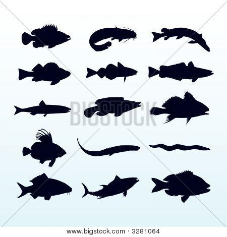 Fish Silhouettes
