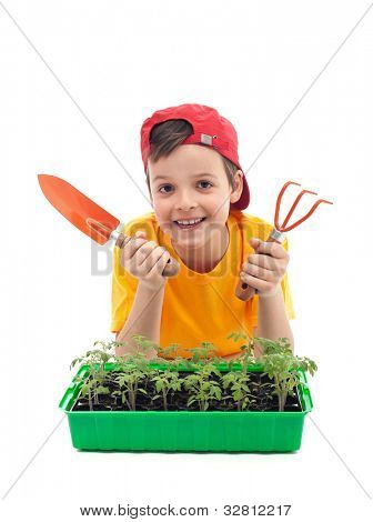Young boy learning to grow food - with tomato seedlings and gardening utensils
