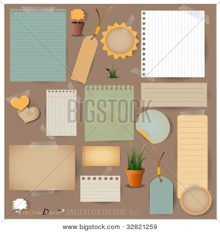 Vector set: Vintage postcard, card and blank paper designs.
