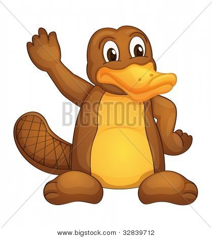 Illustration of a platypus on white