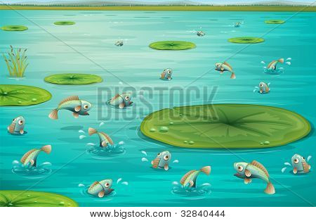 Illustration of fish jumping in a pond - EPS VECTOR format also available in my portfolio.