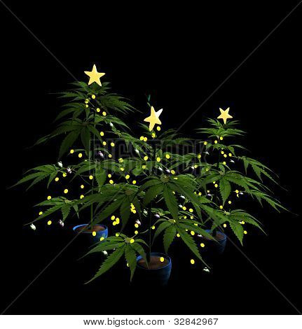 Decorated Christmas Marijuana Trees