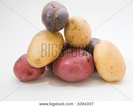 Pile Of Multi Colored Potatoes