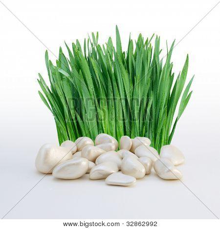 Stapel der Steine und Gras