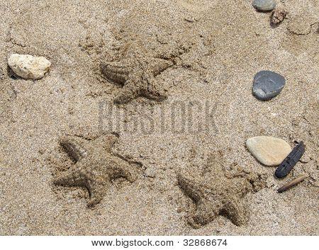Starfish Sandcastles