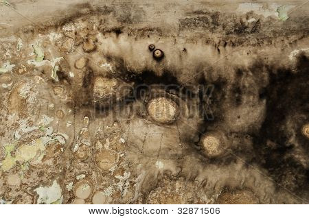 Black Mold Grunge Wall