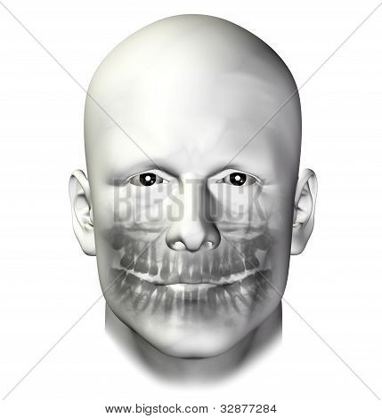 Teeth Dental Scan Adult Male