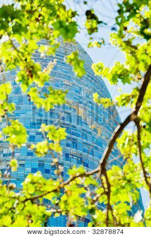Spring Green Leafs And Torre Agbar Skyscraper In Barcelona