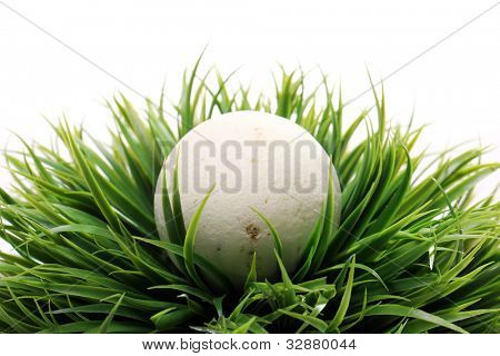 Soap for bath in grass over white background