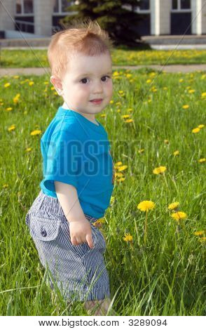 Boy And Dandelions