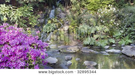 Waterfall At Crystal Springs Rhododendron Garden