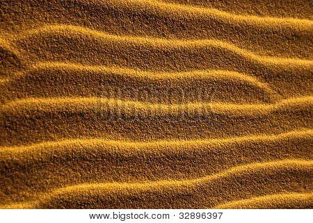Sand Sidewinders